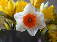 Фото: imageafter.com
